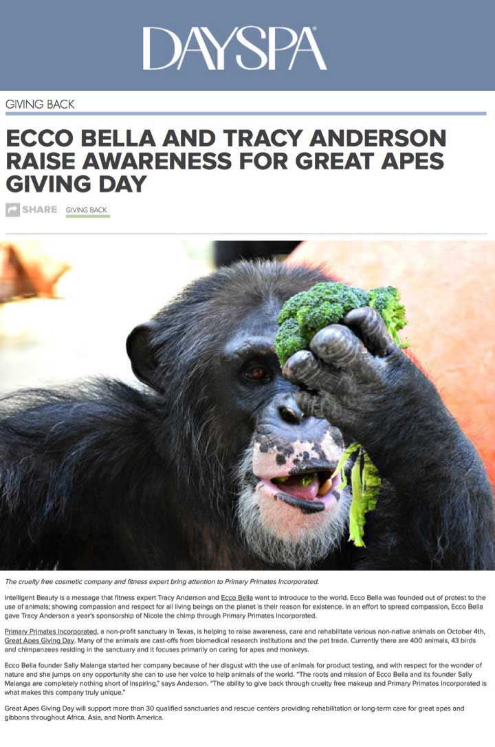 Great Apes Giving Day